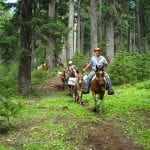 back-country-horsemen-washington-state-equitrekkingcom