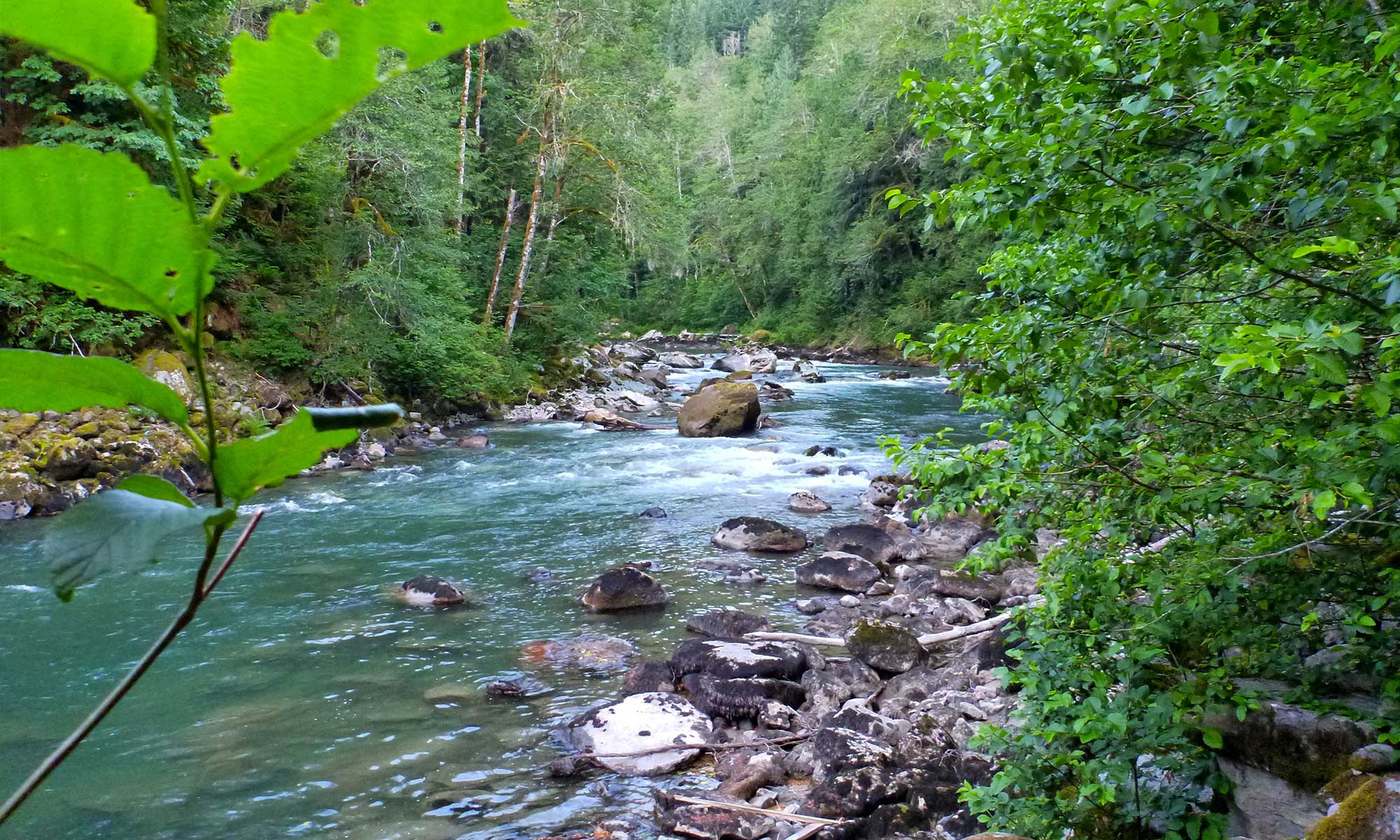South Fork Nooksack River Community Watershed Project